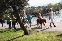 Czytaj więcej: Majówkowy festyn w Ostródzie