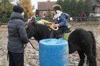 Czytaj więcej: Rodzinne zawody Pony Games