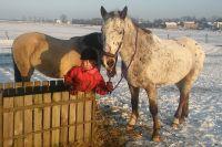 Czytaj więcej: Małe dziecko i duży koń, czyli Anitka z Orłem
