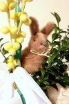 Czytaj więcej: Wielkanoc