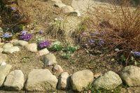 Czytaj więcej: Wiosna!